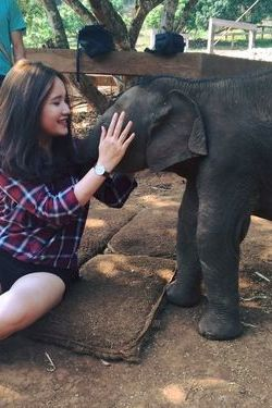 Thuy and elephants