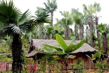 Homestay Mai Chau house