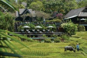 Four Seasons Resort Chiang Mai overview