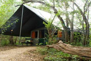 Mahoora Mobile Tented Safari Camps Tent