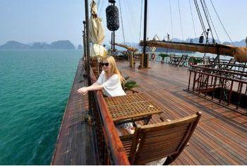 Violet Cruise vessel