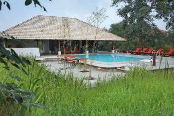 Svasara Jungle Lodge Pool