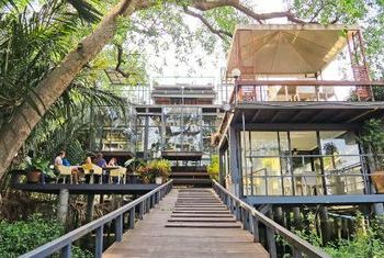 Bangkok Tree House house
