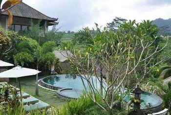 Teras Bali Outdoor Pool