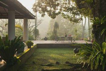 Mesa Stila - Central Java Garden