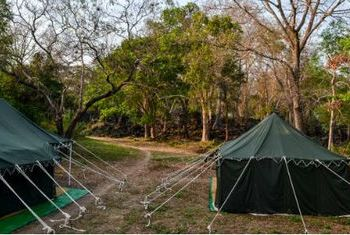 Banteay Chhmar Tented Camp camp
