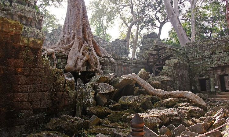 3 Facts About The Sacred Temple Of Ta Prohm