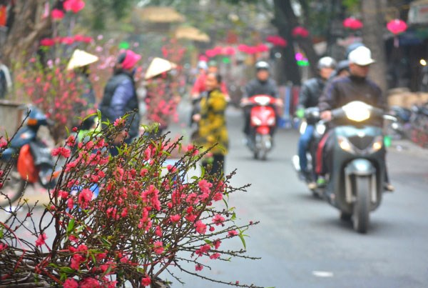 Vietnam Tet Holiday (Part 2): The Preparations