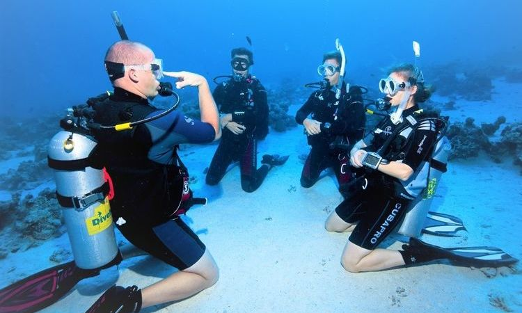 Everything you need to know about Scuba Diving Lesson In Thailand