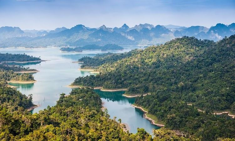Mother Nature's Finest Creations: The Khao Sok National Park