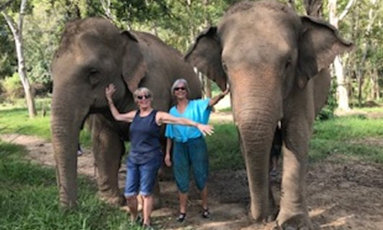 Thailand excursion with Visit to Anantara Elephant Sanctuary