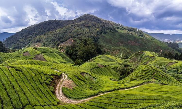 6 Cool Climate Destinations in Southeast Asia All Year Round