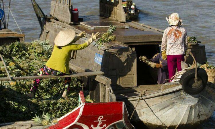 Le Delta Du Mékong Et Ce Qui Le Rend Mémorable