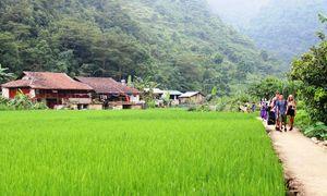 Homestay in Quang Uyen