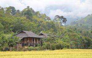Ba Be Lake View Homestay