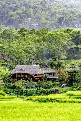 Abenteuer In Den Norden Von Vietnam