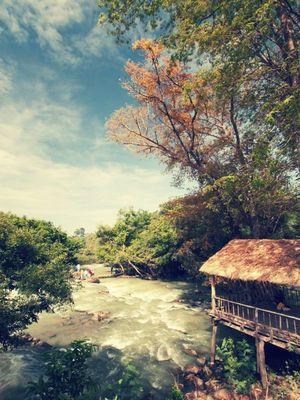 Échapper Aux Aauts Plateaux Du Vietnam