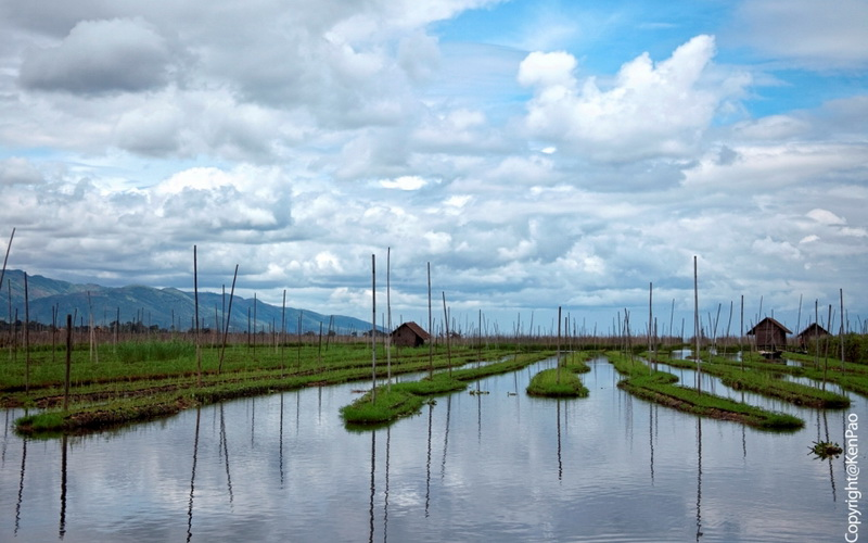 floating-farms-inle-lake