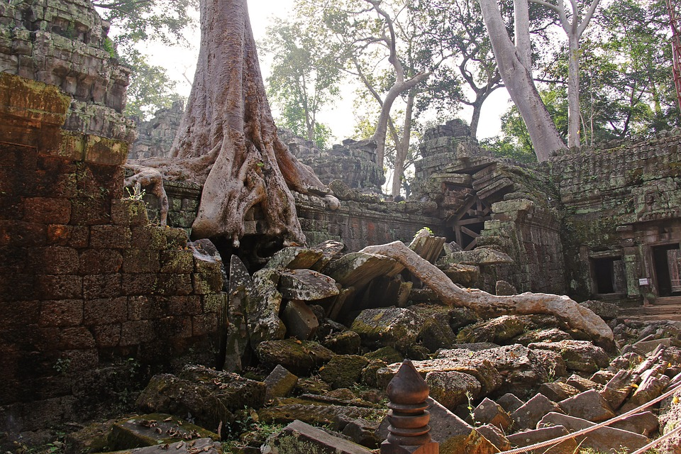 Temples In Angkor Temple Of Ta Prohm