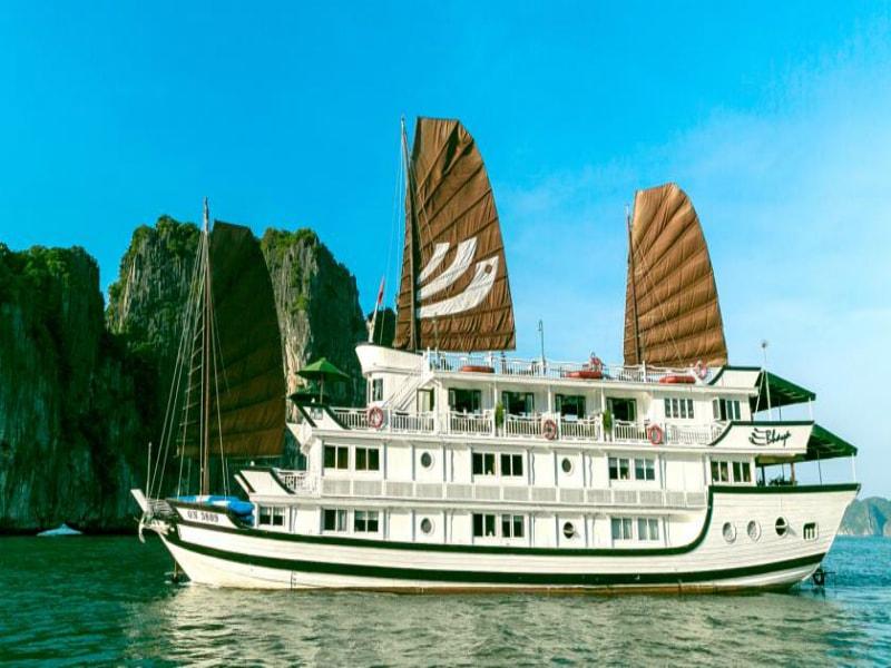 Bhaya Cruise