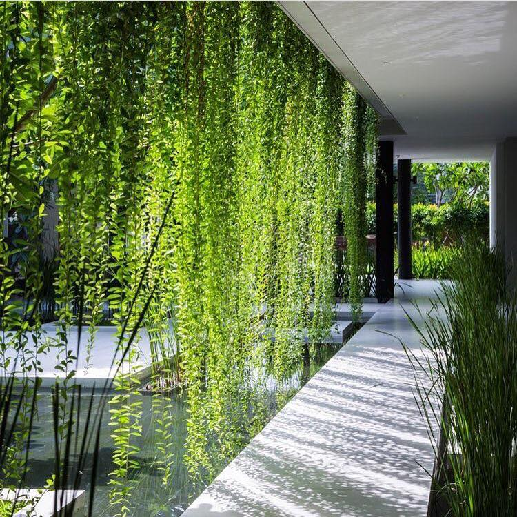 This beautiful garden is designed to calm your mind
