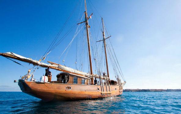 Stereden Cruise