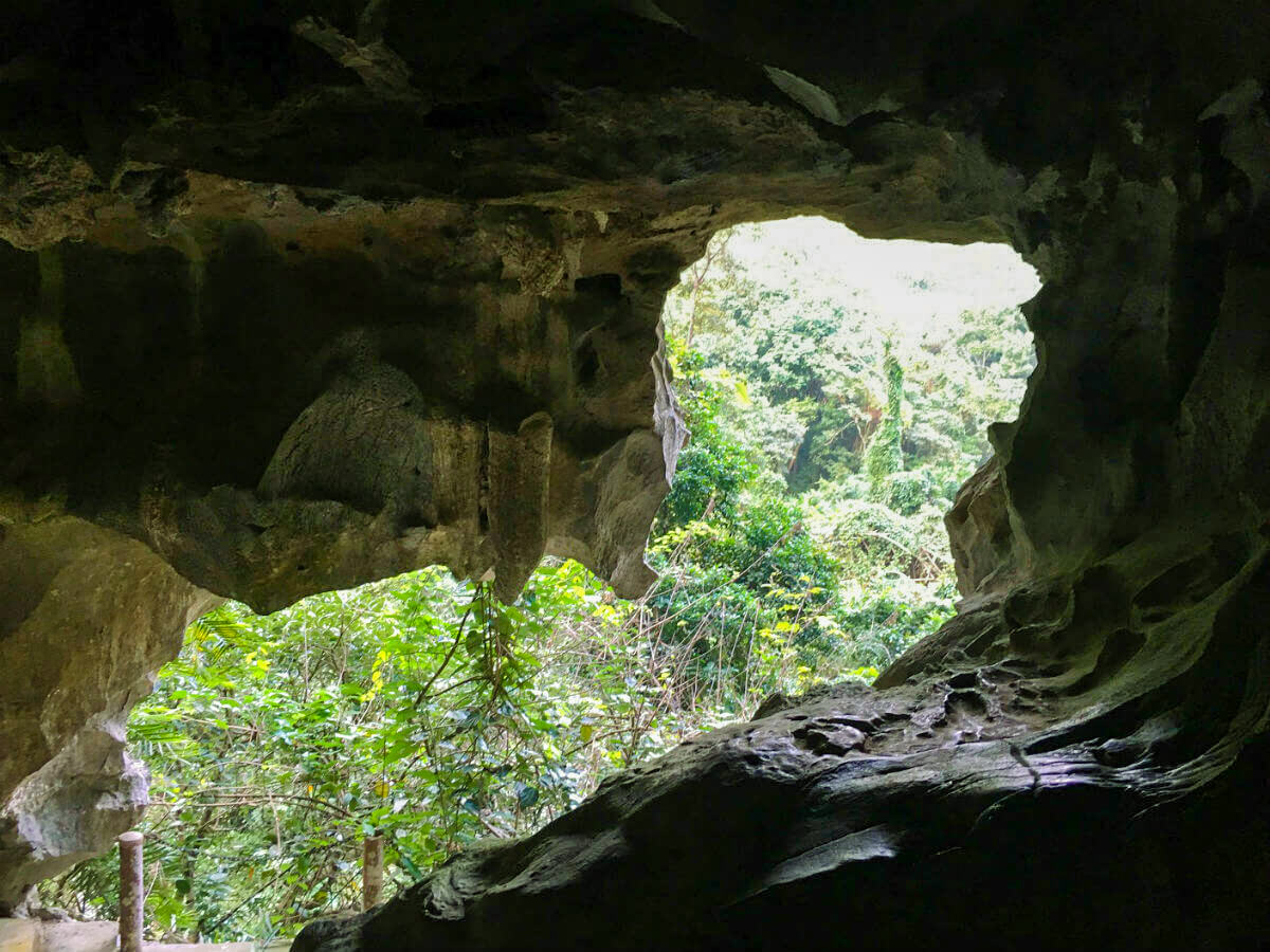 You can see jungle from the cave