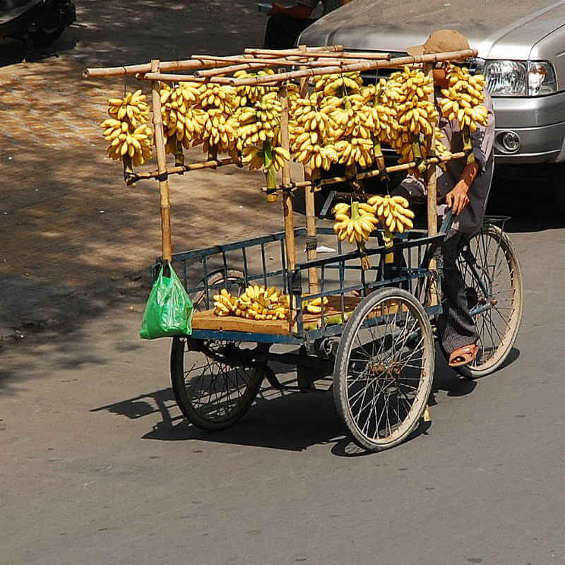 This country has many kinds of delicious fruits due to the tropical climate