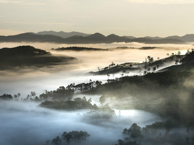 Da Lat is surrounding by mist in the early morning. The temperature in this town is pleasant all year round