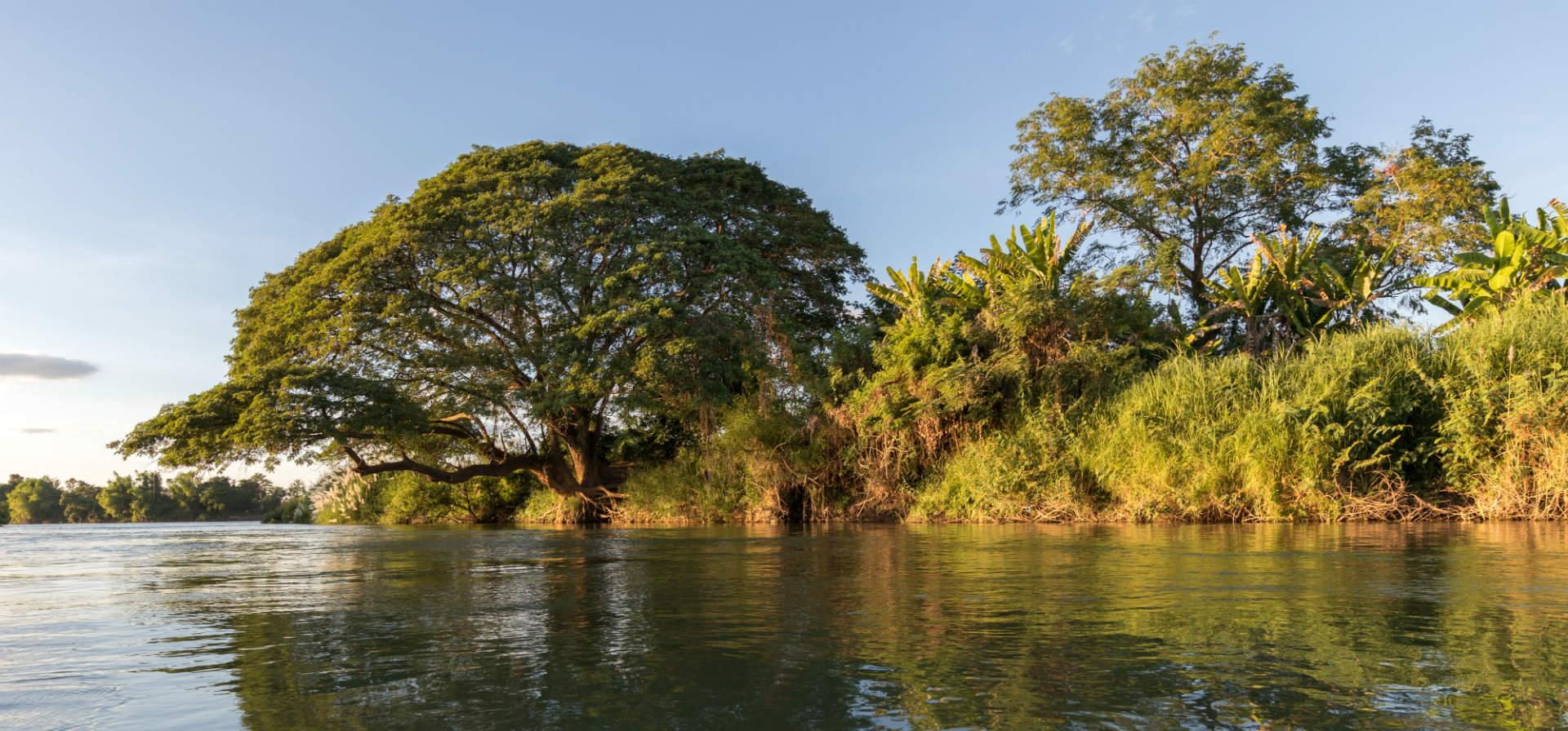 Eco Laos