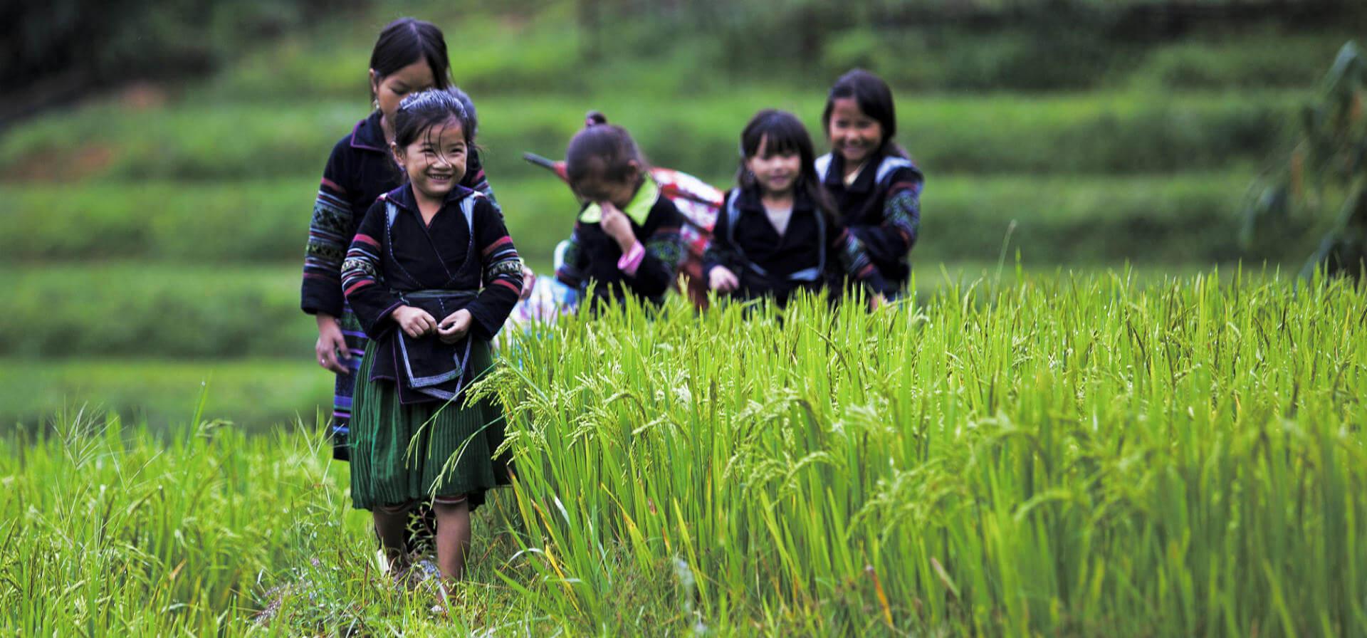 Family Fun in Vietnam