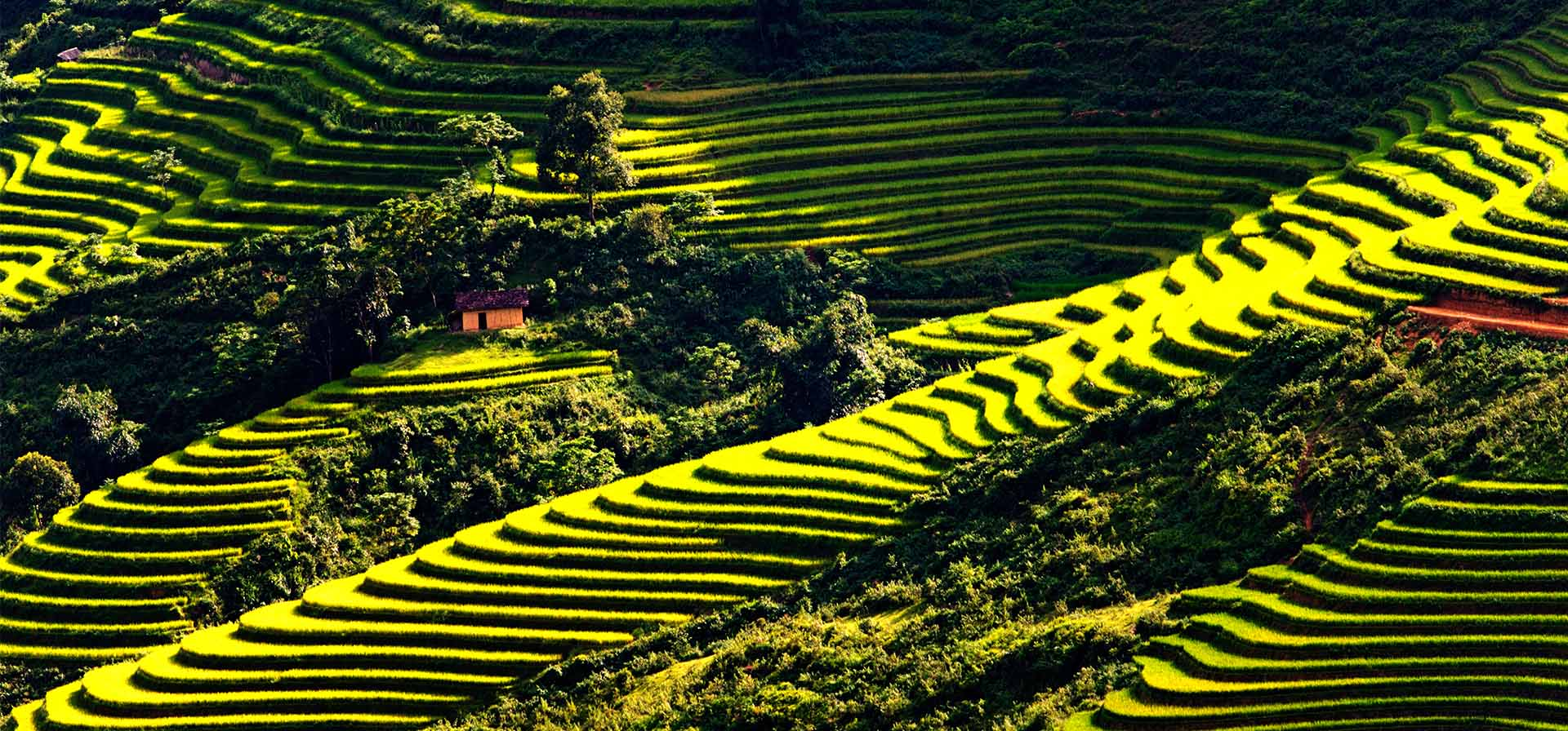 NORTHEAST LOOPS OF VIETNAM