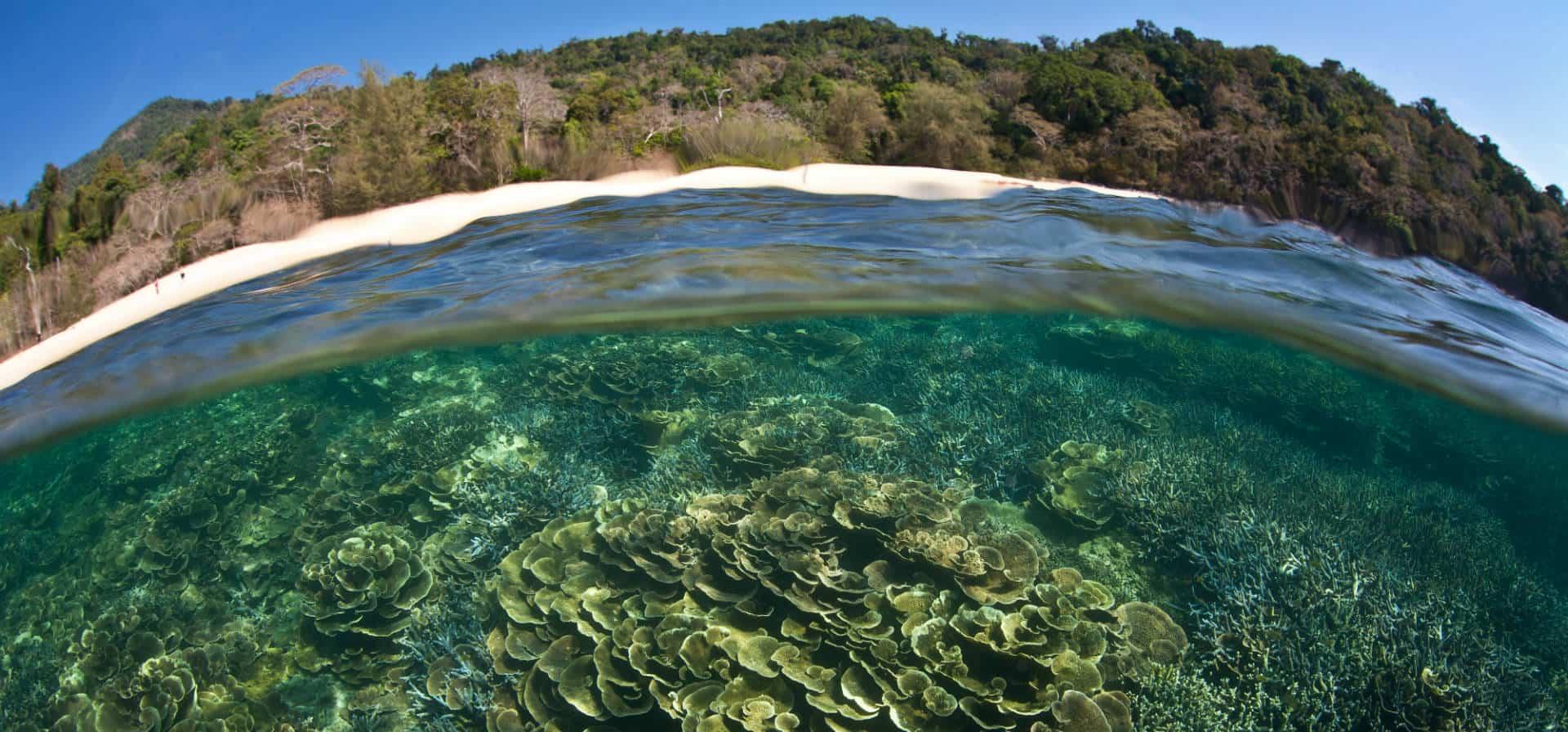 Paradise in Mergui Archipelago