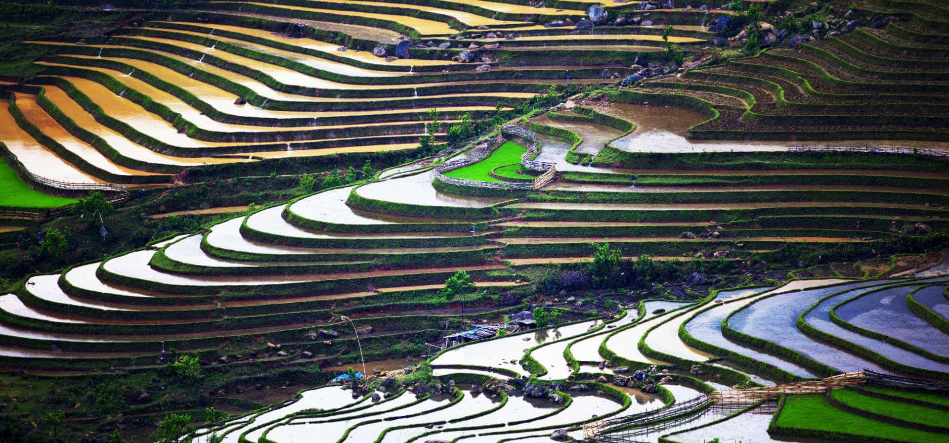 Postcard of Vietnam